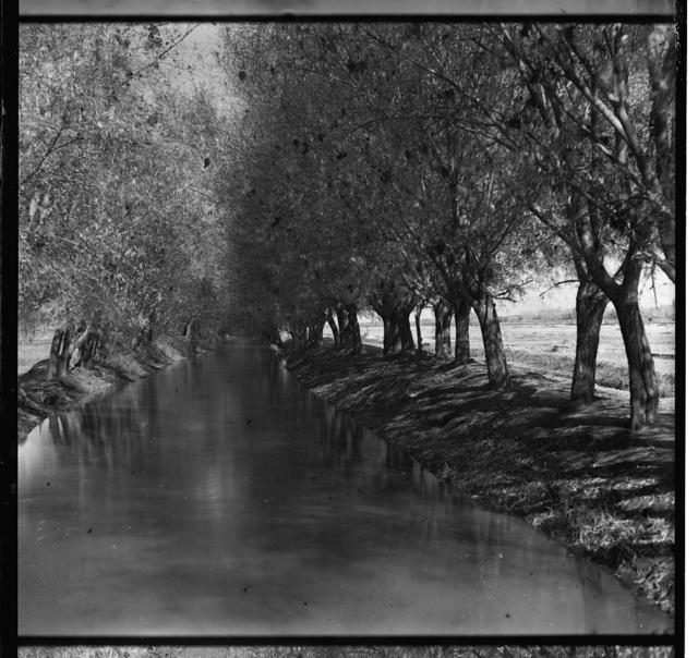 Aryk Pashazada, dai︠u︡shchīĭ vodu v imi︠e︡nīe Velikago Kni︠a︡zi︠a︡ Nikolai︠a︡ Konstantinovicha. Golodnai︠a︡ stepʹ