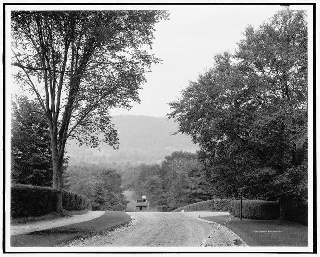 Baldhead Mt. from Sunset Ave., Lenox, Mass.