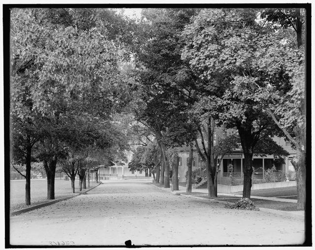 [Buffalo Avenue and Hotel Kaltenbach, Niagara Falls, N.Y.]