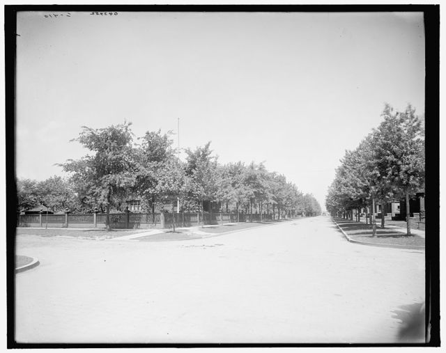 [Devonshire Road, looking north, Walkerville, Ont.]
