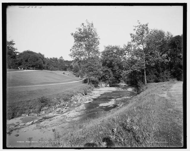 Doan Brook, Wade Park, Cleveland, O[hio]