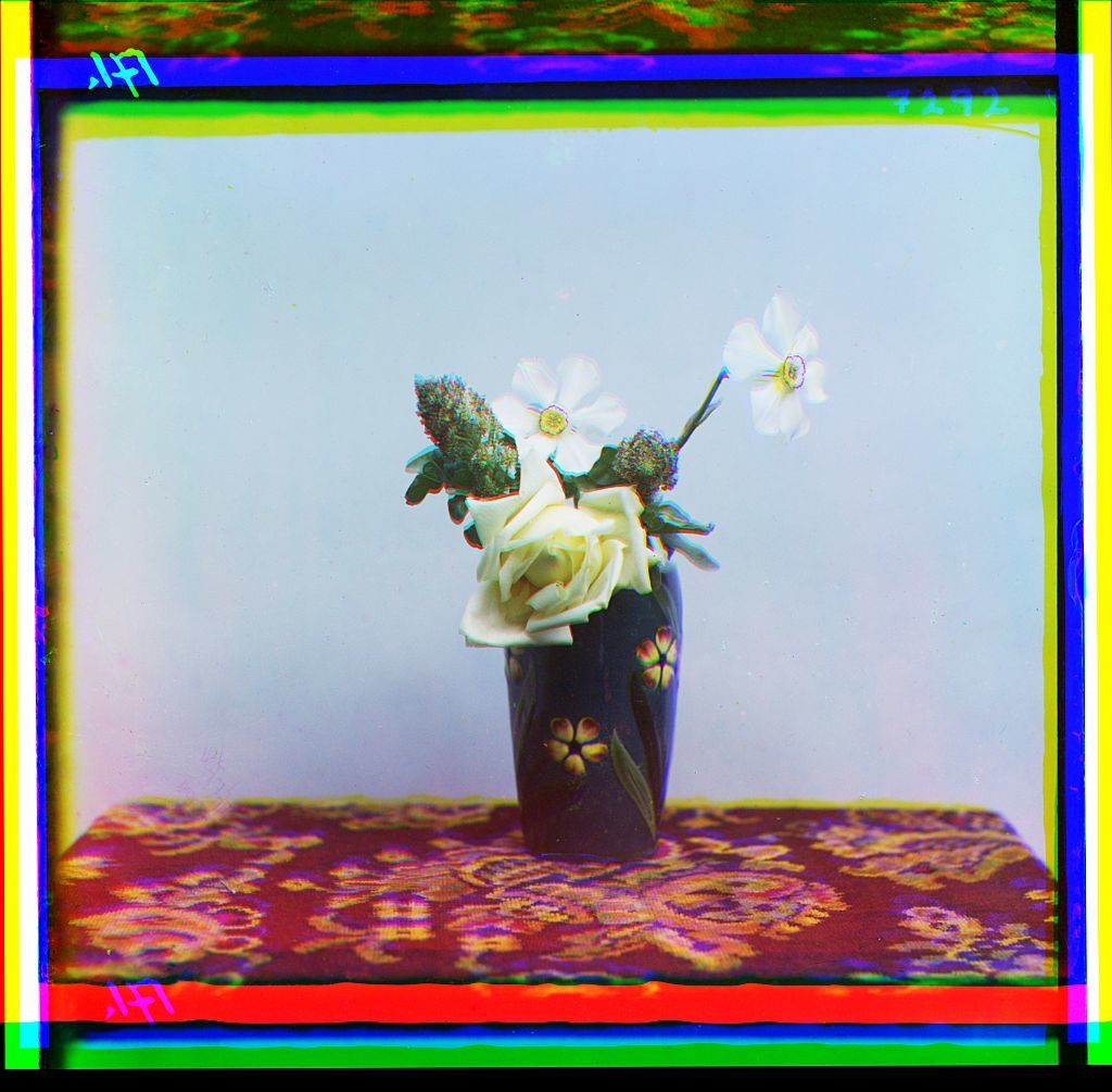 [Flowers in a vase]