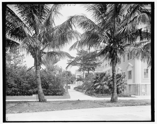 [Hotel Royal Poinciana, west facade, Palm Beach, Fla.]
