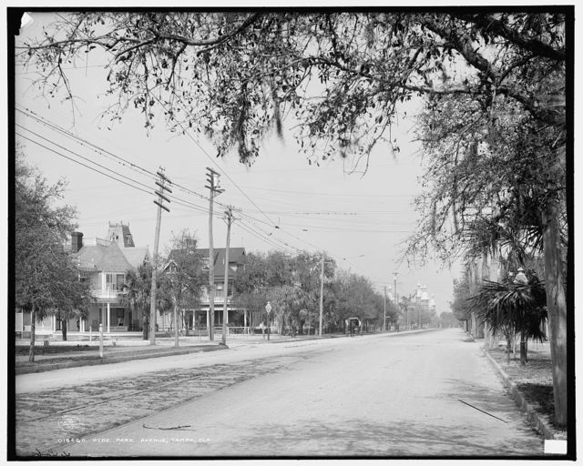 Hyde Park Avenue, Tampa, Fla.