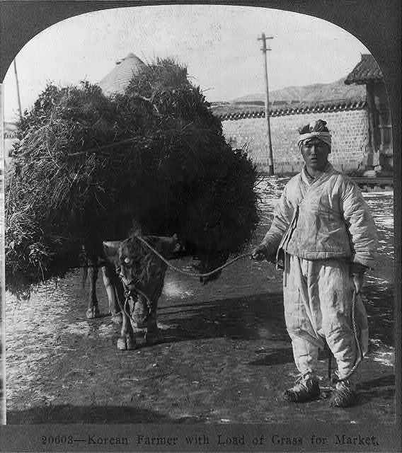 Korean farmer with load of grass for market