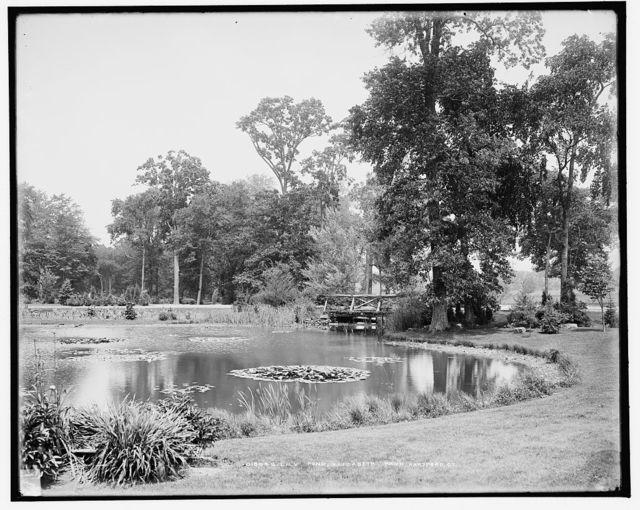 Lily pond, Elizabeth Park, Hartford, Ct.