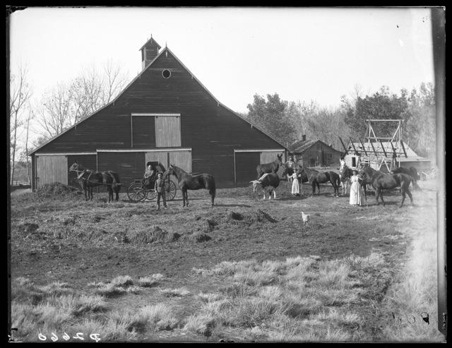 Link Milburn's barn, Overton, Nebraska.