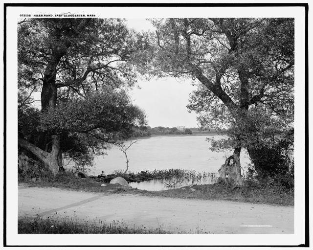 Niles Pond, East Gloucester, Mass.