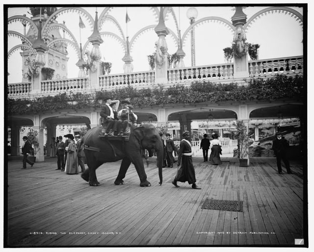 Riding the elephant, Coney Island, N.Y.