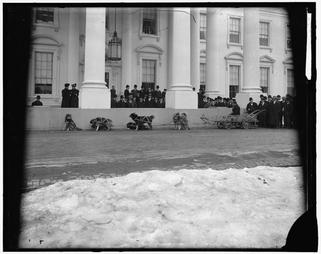 SMITH ELI DOG TEAM [in front of White House]
