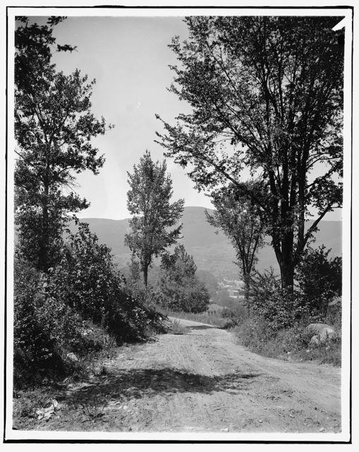 [The Road to Mount Greylock, Adams, Mass.]