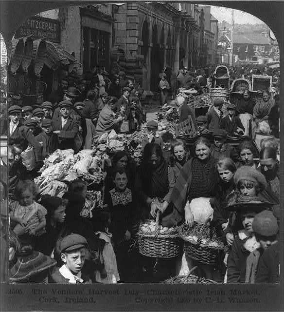 The venders' harvest day - characteristic Irish market, Cork, Ireland