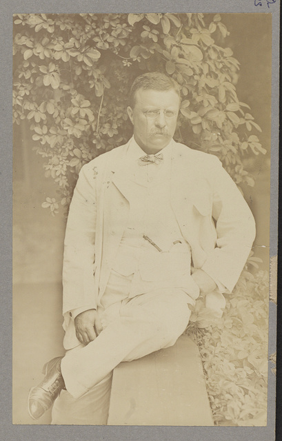 [Theodore Roosevelt, three-quarters length portrait, facing front, seated with leg crossed on veranda]