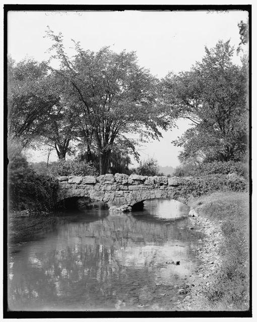 [Willow Island bridge, Niagara Falls, N.Y.]
