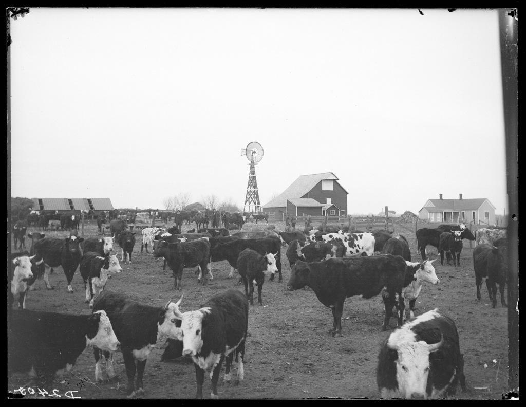 W.W. Watts, Cozad, Dawson County, Nebraska.