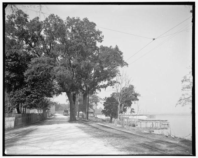 Back Bay Shell Road, Biloxi, Miss.