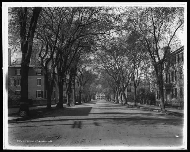 Chestnut St., Salem, Mass.