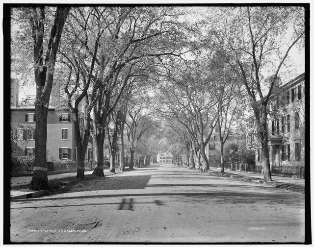 Chestnut St., Salem, Mass.