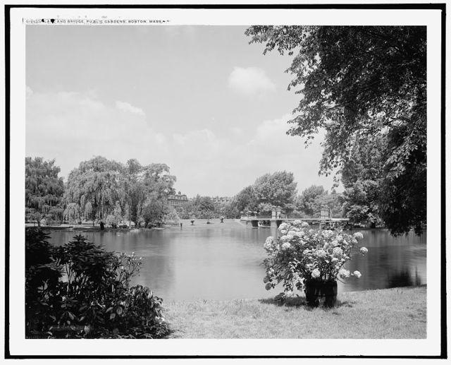 Lake and bridge, Public Gardens, Boston, Mass.
