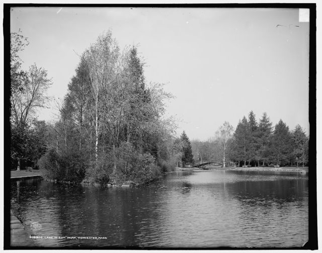 Lake in Elm Park, Worcester, Mass.