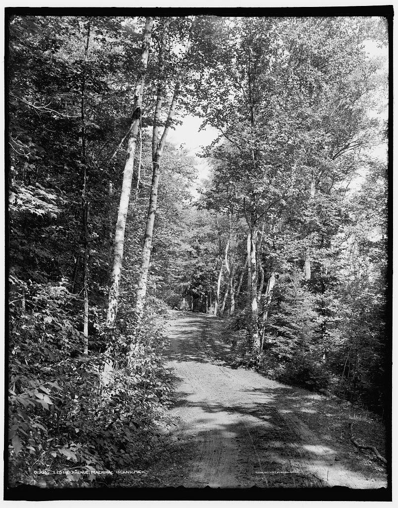 Leslie Avenue, Mackinac Island, Mich.