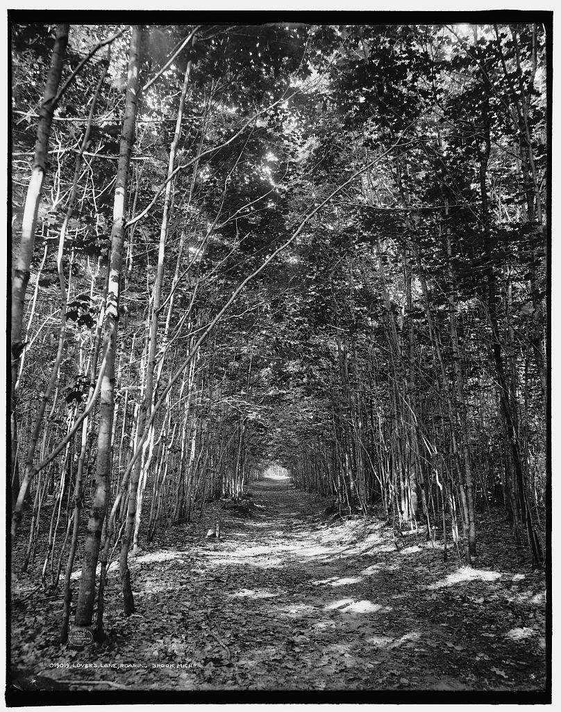 Lover's Lane, Roaring Brook, Mich.
