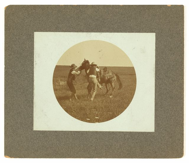 "Mounting a ""bronc"" / photo by Erwin E. Smith, Bonham, Texas."