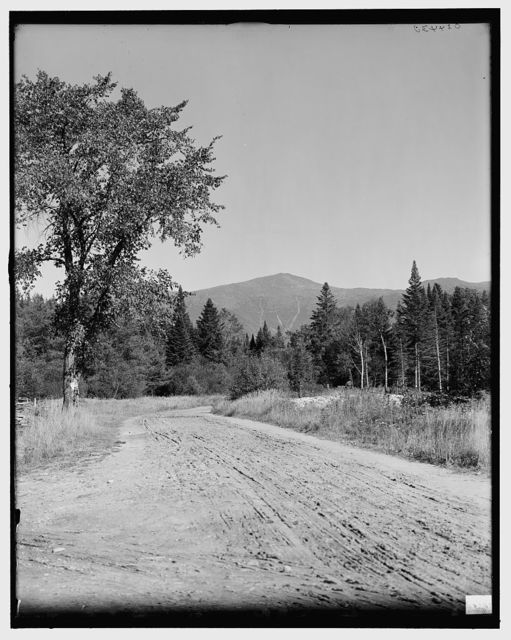 [On the road to the base of Mount Washington, White Mountains, N.H.]