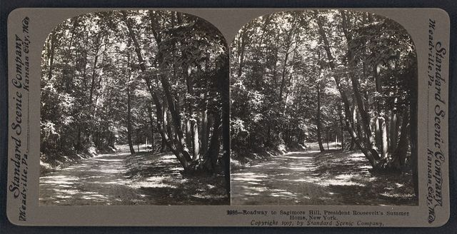 Roadway to Sagamore Hill, President Roosevelt's summer home, New York