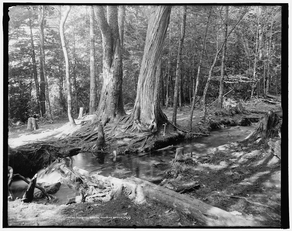 Roaring Brook, Roaring Brook, Mich.