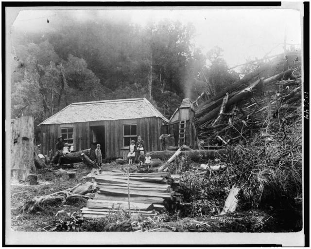 [Settler's homestead, New Zealand]