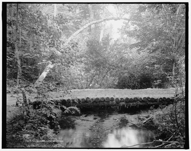 The Bridge, Roaring Brook, Mich.