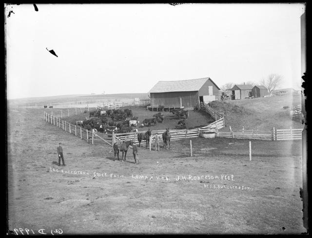 The Evergreen Stock Farm run by J. Robinson, Lomax, Custer County, Nebraska.