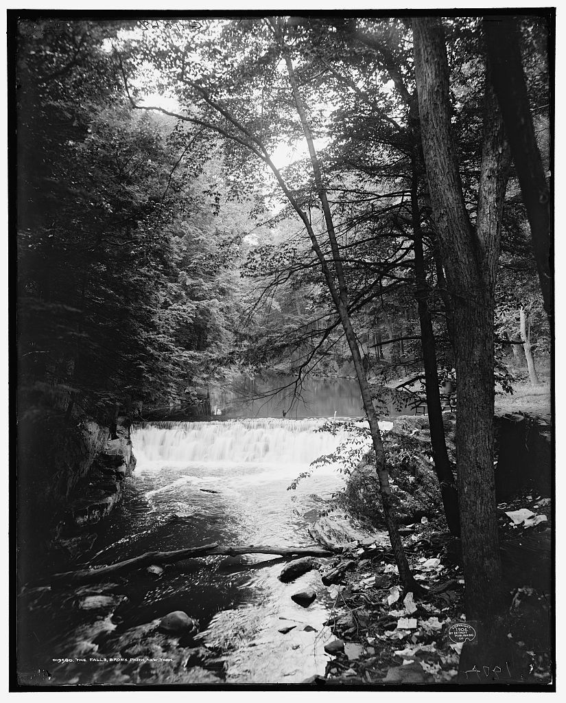 The Falls, Bronx Park, New York