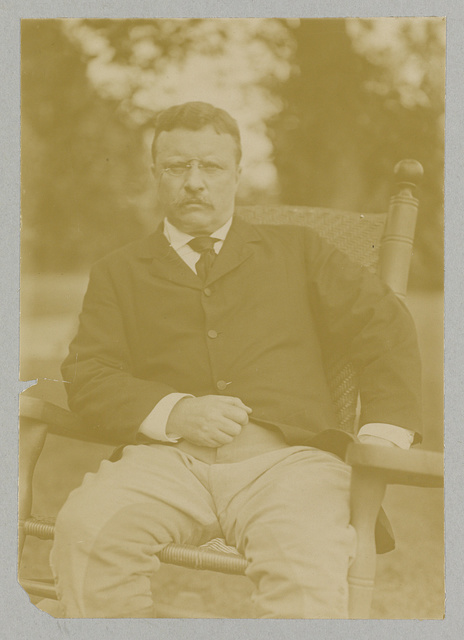 [Theodore Roosevelt, three-quarter length portrait, seated]