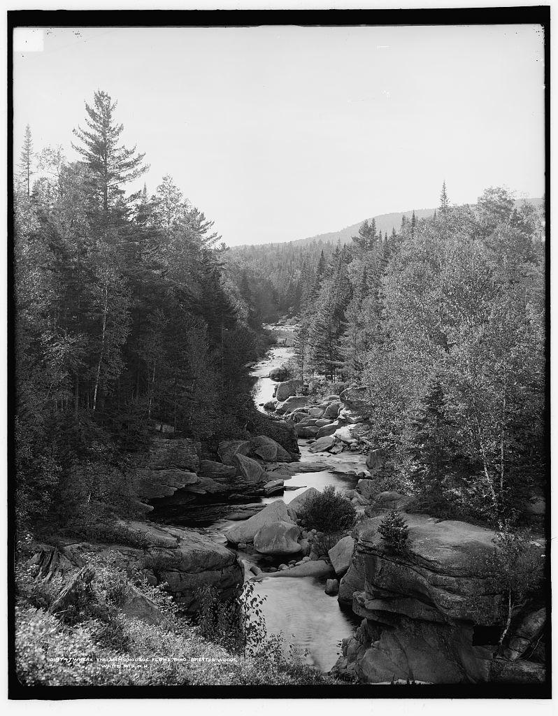Where the Ammonoosuc flows thro Bretton Woods, White Mts., N.H.