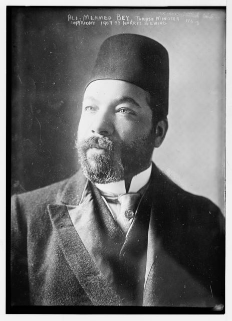 Ali Mehmed Bey, Turkish Minister, copyright by Harris & Ewing / Harris & Ewing