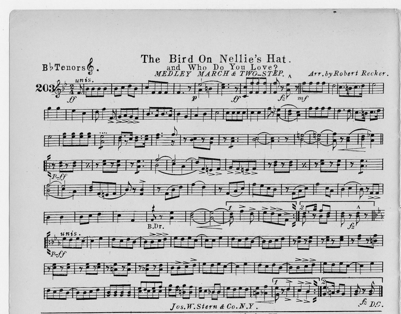 Bird on Nellie's hat