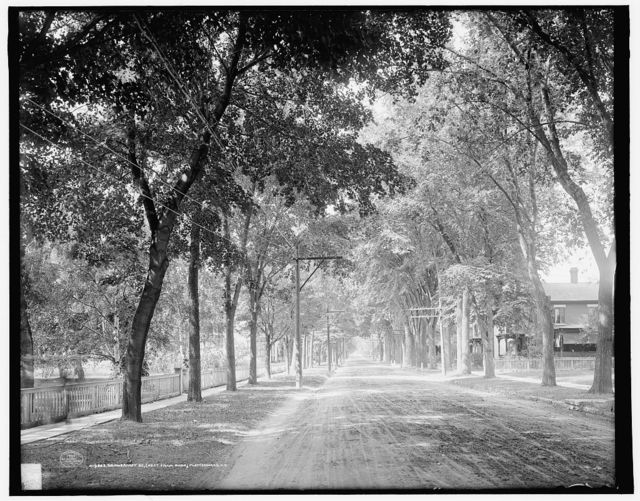 Brinkerhoff St. (west from park), Plattsburgh, N.Y.