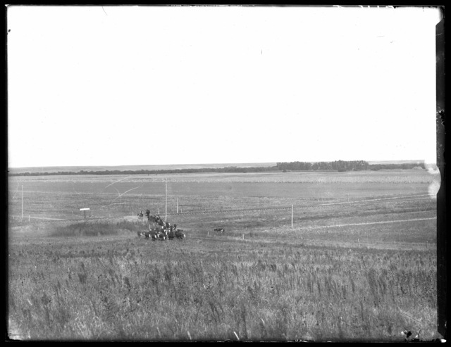 Driving cattle across railroad tracks near Sumner, Nebraska, showing the Wood River Valley 2 miles to the east.