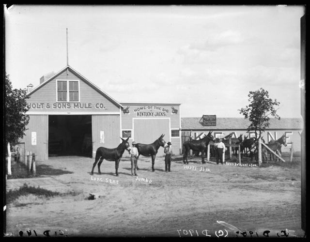 Henry Holt and his yearling family, Kearney, Buffalo County, Nebraska