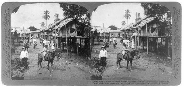 Houses on stilts where laborers' families live - cacao plantation, La Clementina, Ecuador