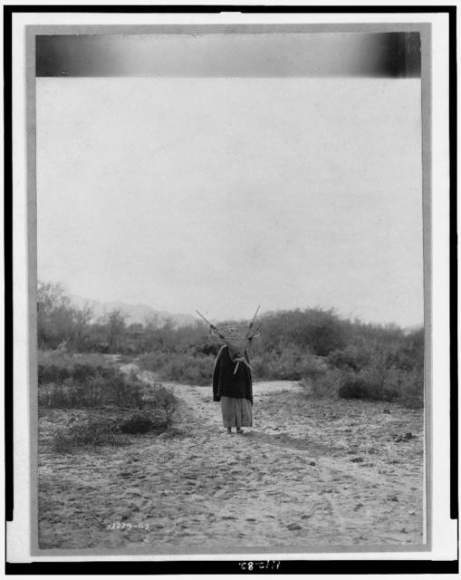 [Pima woman, with burden basket on back, walking away from camera, Pima, Arizona]