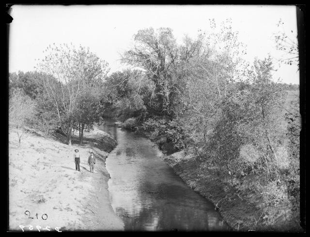 Scene on the Wood River north of Odessa, Nebraska.
