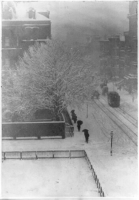 Snapshot--from my window, New York