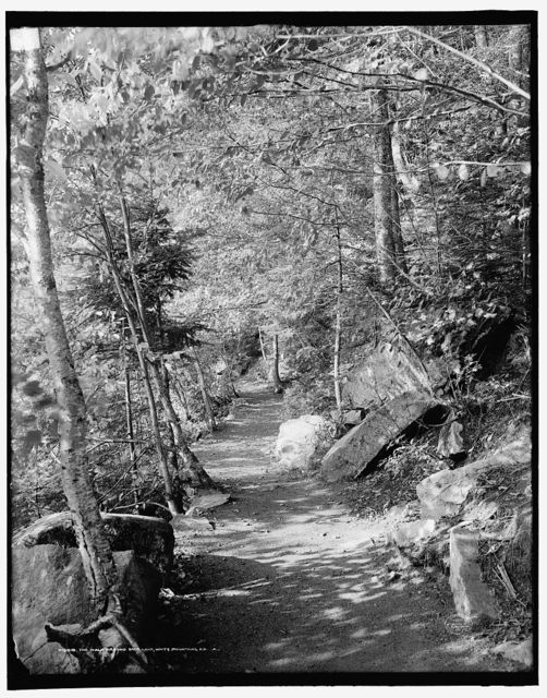 The Walk around Saco Lake, White Mountains, N.H.