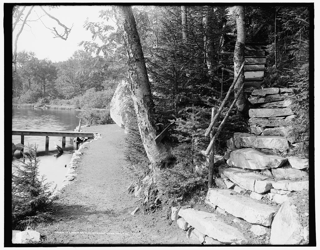 The Walk around Saco Lake, White Mts., N.H.