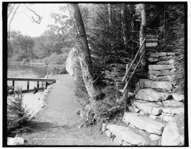The Walk around Saco Lake, White Mts., N.H.