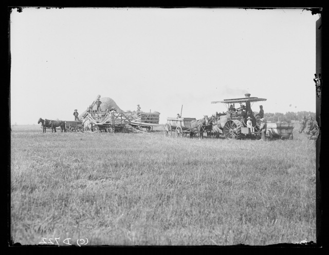 Threshing on a farm west of Lexington, Nebraska