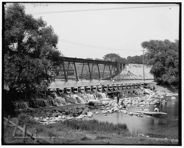 Dam on Huron River, Ann Arbor, Mich.
